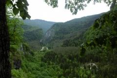 P1010589-Lake-Ritsa-Valley-view