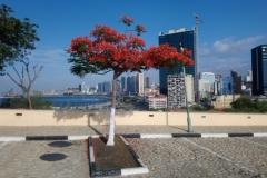 DSC_0027-Luanda-moderne-hoogbouw-vanaf-Sao-MIguel