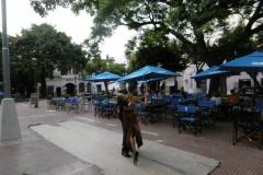 1_P1000173-Tangoshow-op-Plaza-Dorrego