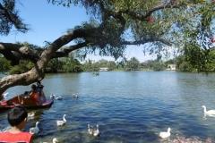 1_P1000667-Parque-de-Palermo
