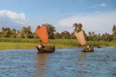 IMG_3383-Bangladesh-platteland