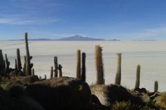 20151104_163724-Isla-Pescado-of-Isla-Inchuasi
