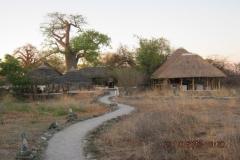IMG_1108-Planet-Baobab