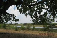 IMG_1172-Okavangodelta-bij-Seronga