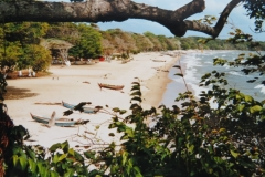 IMG_3261-Ilha-Marajo-monding-Amazone