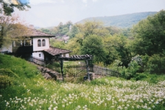 IMG_3505-Boshenzi