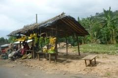 P1050587-Bananenverkopers-onderweg-naar-Bujumbura