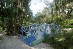 P1010098-Botanic-Gardens