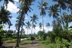 P1000968-Wandeling-bij-strand-in-Bambao