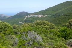 p1020913-Omgeving-Cap-Corse