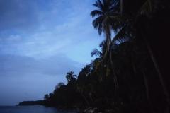 58-27-Cahuita-N.P.-strandwandeling