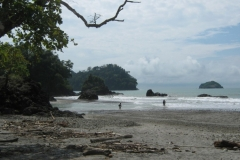 IMG_1081-Costa-Rica-uepos-NP-Manuel-Antonio