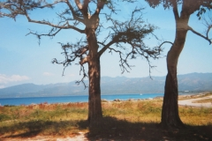 IMG_3493-Uitstap-aan-de-kust