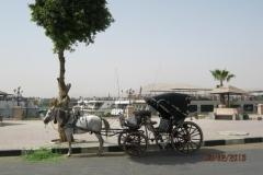 IMG_3463-Luxor-Corniche
