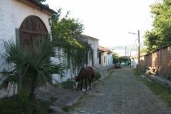 IMG_0638-El-Salvador-Sochitoto