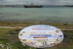 IMG_2174-Whalebone-Cove