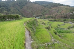 IMG_2877-Maligcong