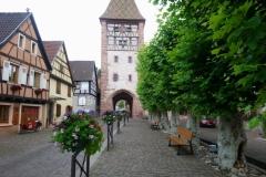 DSC_0543-Bergheim