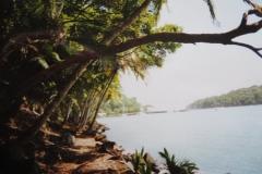 11-Duivelseilanden-Ile-Royale