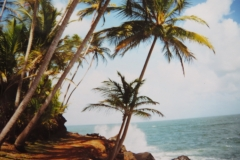 12-Ile-Saint-Joseph-tropisch-en-betoverend