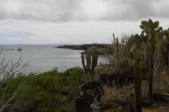 1_20151014_114834-Galapagos