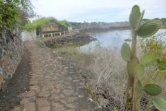 1_P1120593-Galapagos-Puerto-Ayora-Las-Grietas