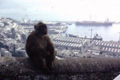 35-01-Gibraltar-haven