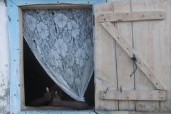 P1010434-Ile-a-Vache-hope-for-Haiti