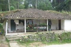 IMG_0726-Honduras-te-lande