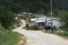 IMG_0741-Honduras-dorp