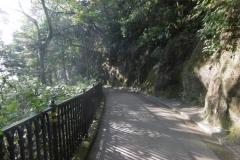 P1000919-The-Peak-trail