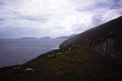 1_54-07-Inch-Kerry-kust-van-Dingle