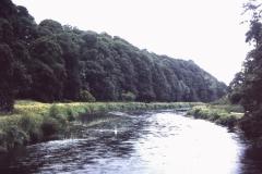 53-14-Cahir-Tipparary-Suir-River-bij-Swiss-Cottage