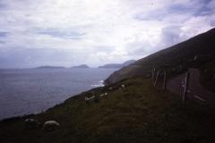 54-07-Inch-Kerry-kust-van-Dingle