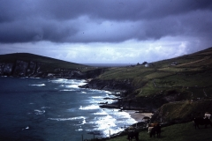 54-11-Dunquin-Kerry-Slea-Head