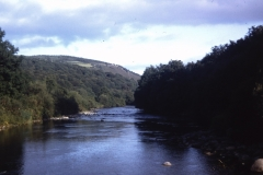 56-34-Ballinaclash-Wicklow-Meeting-of-the-Waters