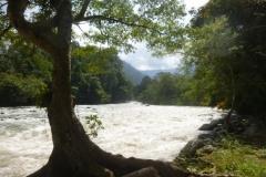 P1060559-Alas-River-in-Mt-Leuser-NP