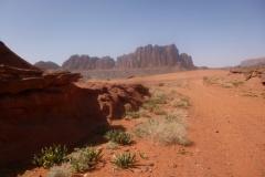P1080439-Wadi-Rum