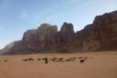 P1080497-Bedoeinen-in-Wadi-Rum