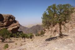 P1080638-Petra