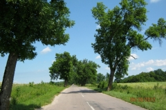 1_IMG_2701-Pruissisch-landschap-in-Lawavallei