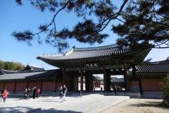 P1010047-Changdeokgung-Palace-close-to-my-hostel