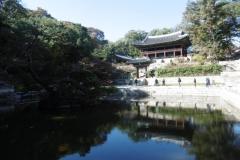 P1010123-Changdeokgung-Royal-Gardens