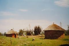 IMG_3660-Morija-typische-hutten-met-agave