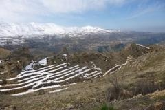 P1070971-Qadisha-Valley-bij-The-Cedars