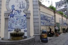 P1000795-Ceramic-Portuguese-wall