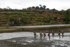 1_P1000769-Ricefields-between-Antsirabe-and-Miandrivazo