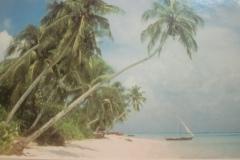 DSC_3920-Farukolufushi