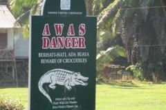 IMG_3179-Crocodiles-on-our-way