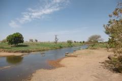 P1000461-Velden-bij-Bani-rivier
